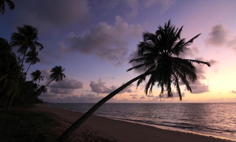 Lever de soleil sur la plage de Patacho